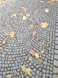 I love this small brick cobblestone installed in a radiating pattern...one thing I noticed..it is so CLEAN in Germany, there was no gum embeded in this sidewalk...how fabulous!